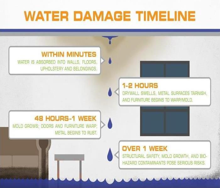 Water Damage Understanding the Timeline of Water Damage