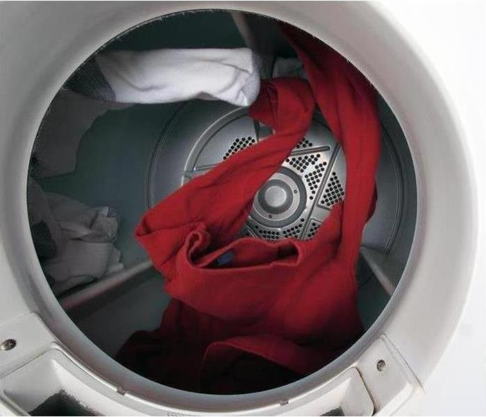 Mold Remediation What Can You Do to Fix Moldy Clothes?