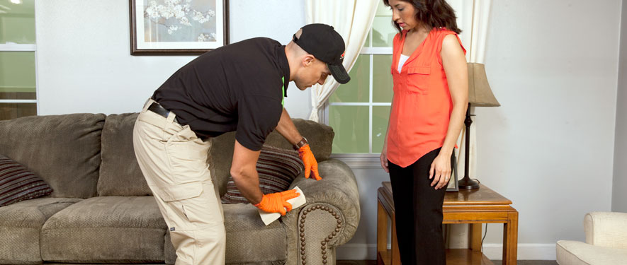 Lee's Summit, MO carpet upholstery cleaning